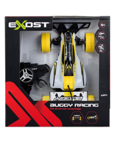 Exost Buggy Racing